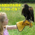 能ある鷹は爪を隠す