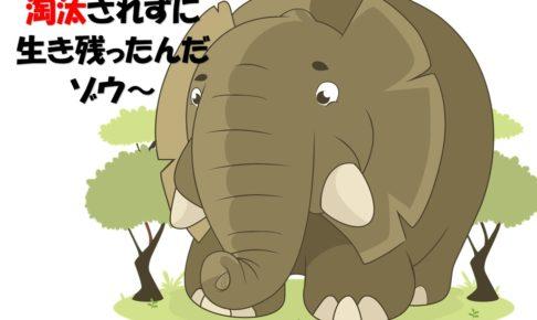 淘汰されずに生き残った象